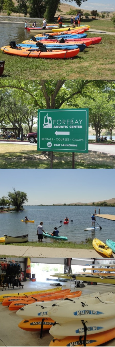 Forebay picture collage